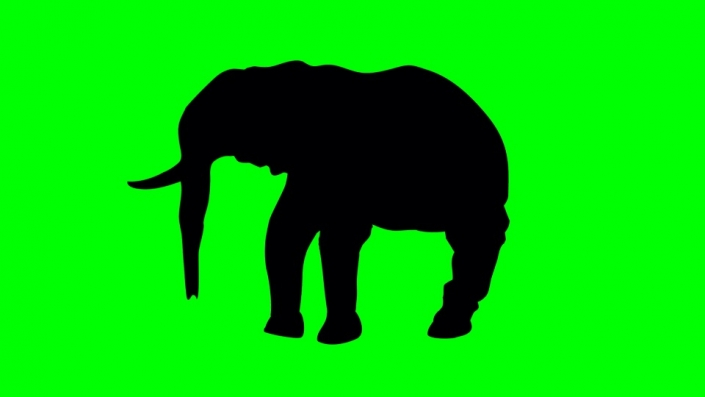 Elephant black silhouette on a green background