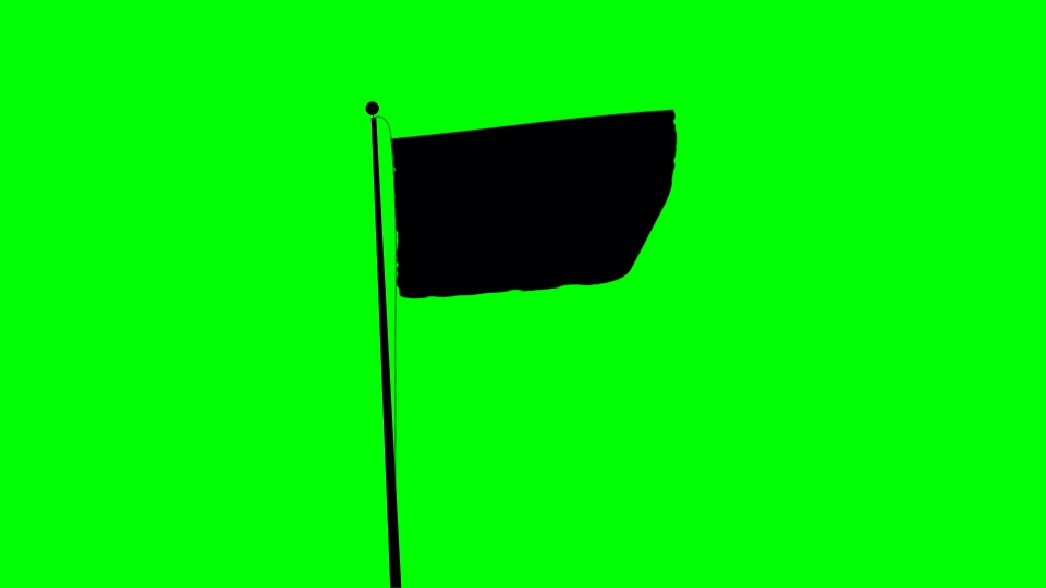 Flag black silhouette on a green background