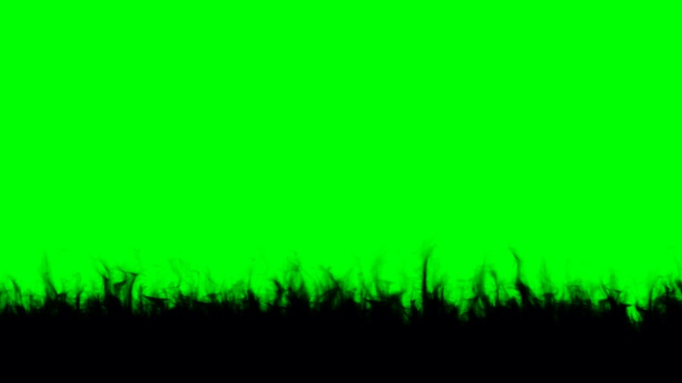 Fire black silhouette on a green background