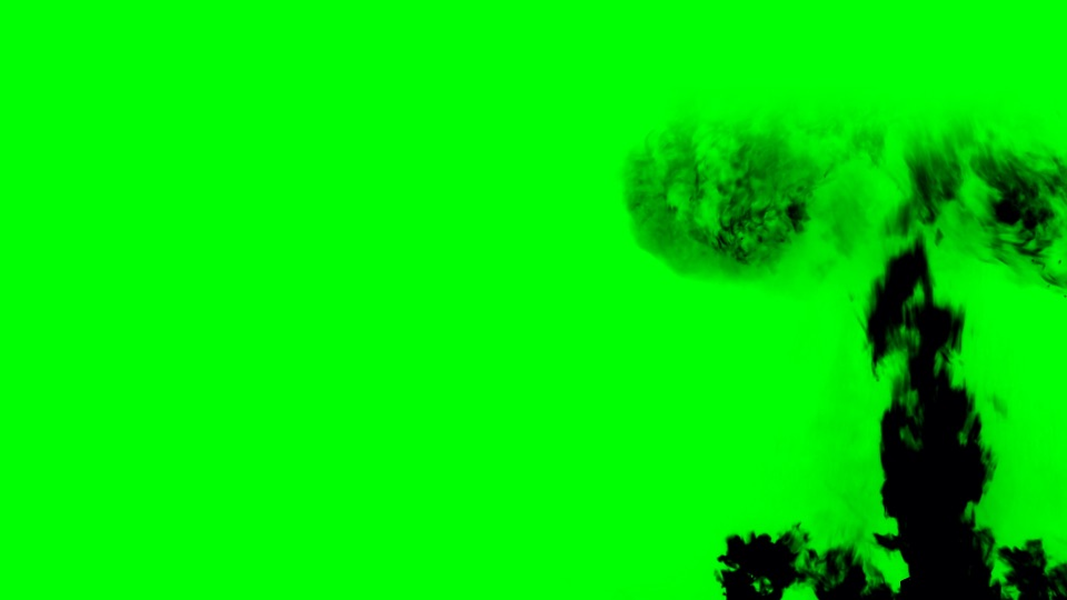Grenade black silhouette on a green background
