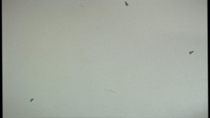 A grainy film texture